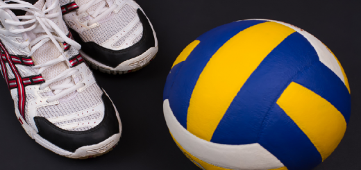 Features to look for in some of the perfect pro volleyball shoes